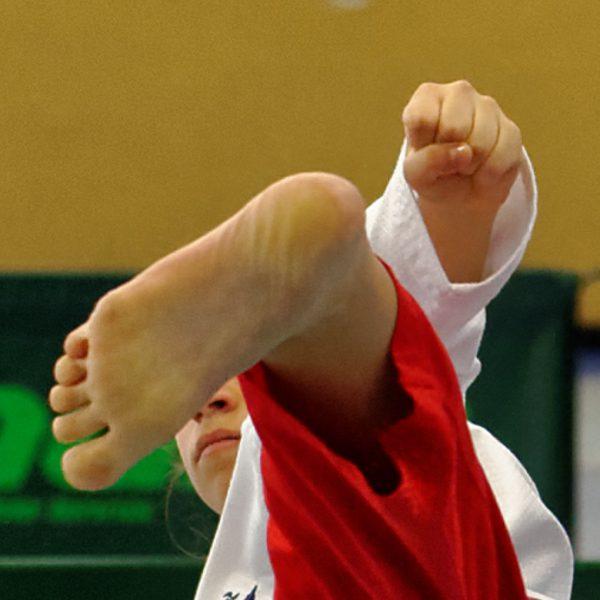 Taekwondo > Ender Open 2016 #02